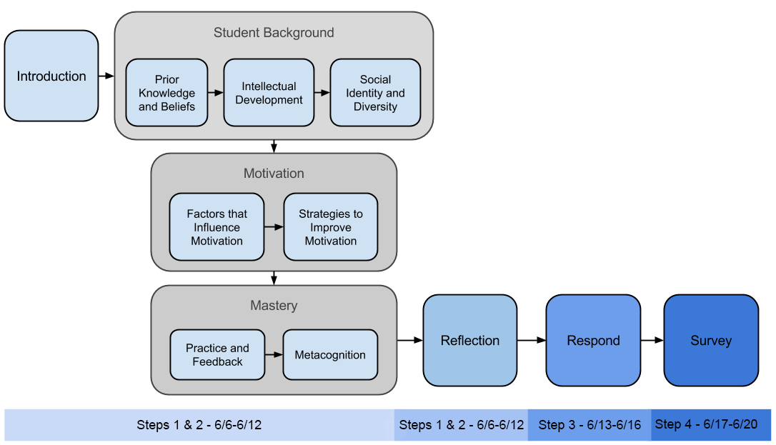Flow Chart from introduction-> student background -> motivation ->mastery -> reflection -> respond -> survey