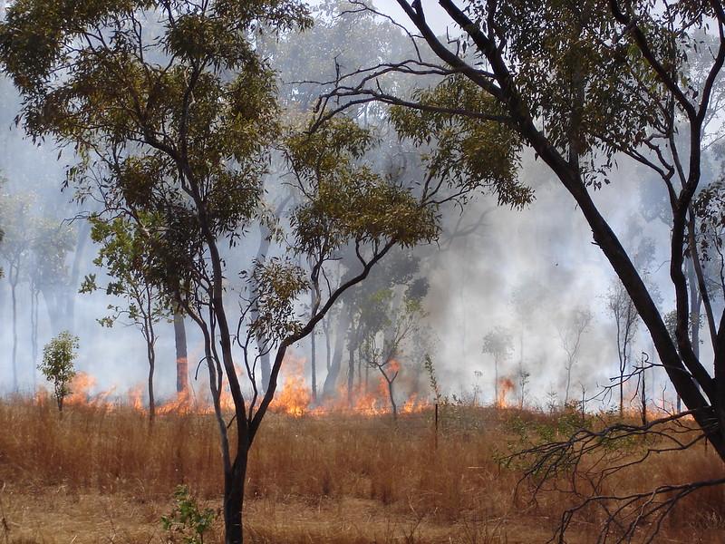 Australia Bush Fire credit - Fredrick Vanrenterghem