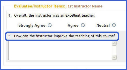 Screenshot of the evaluatee/instructor items section