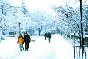students on a snowy campus